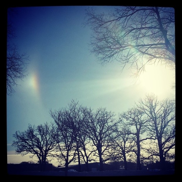 Pictures of Sun Dogs - Instagram User - french_konexion