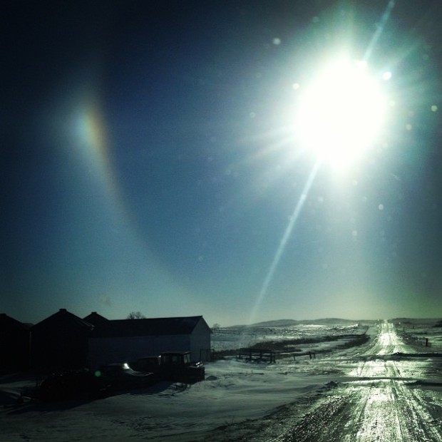 Pictures of Sun Dogs - Instagram User - kassijorgenson